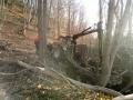 puiduhakke tootmine, väljavedu, koondamine