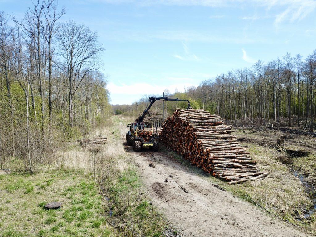 Metsa väljaveoteenus